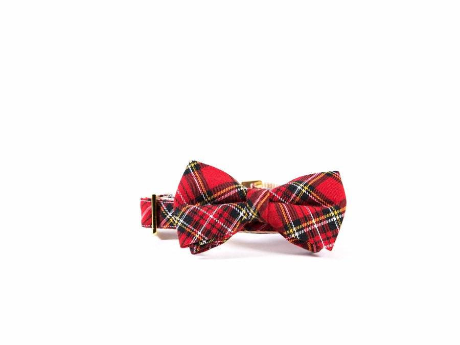 Darling Dear Co_Red and Black Tartan Bow Tie Collar_06231